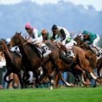 Horse Racing Racecard CSV